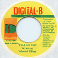Admiral Tibet - Tell Me Why (Digital B)
