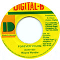 Wayne Wonder - Forever Young