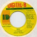Junior Tucker - Why (Digital B)