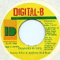 Anthony Red Rose, Jimmy Riley - Changes In Life (Digital B)