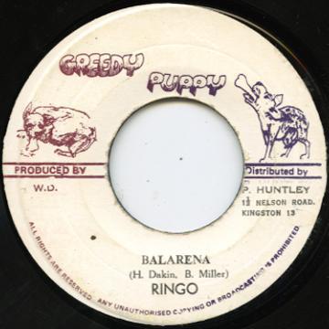 Ringo - Balarena (Greedy Puppy)
