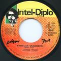 Peter Tosh - Babylon Queendom (Intel Diplo)