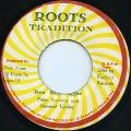 Peter Ranking, General Lucky - Non Stop Reggae (Roots Tradition)