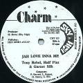 Tony Rebel, Half Pint, Garnet Silk - Jah Love Inna Me (Charm UK)