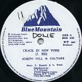 Joseph Hill, Culture - Crack In New York (Blue Mountain US)