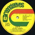 Wayne Jarrett - Chip In (Greensleeves UK)