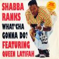 Shabba Ranks - What 'Cha Gonna Do?; Ragga Mix; 40th Street hip hop mix (Epic US (33rpm))