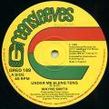 Wayne Smith - Under Me Sleng Teng (Greensleeves UK )