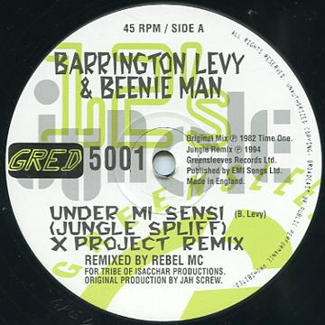 Barrington Levy, Beenie Man - Under Mi Sensi (Jungle Spliff) (Greensleeves UK)