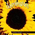 Barrington Levy - Nothing's Changed (Mafia And Fluxy Mix); (Dub Mix) (MCA UK (33rpm))