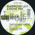 Barrington Levy, Beenie Man - Two Sounds Jungle (Greensleeves UK)