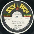 Tony Rebel, Half Pint, Garnett Silk - Jah Love Inna We (Sky High US)