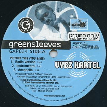 ReggaeCollector com - Vybz Kartel - Picture This (You &
