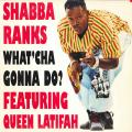 Shabba Ranks - What 'Cha Gonna Do?; Ragga Mix; 40th Street hip hop mix (Epic US (33rpm))