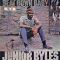 Junior Byles - Beat Down Babylon (Trojan UK)