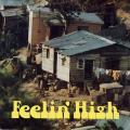 Various - Feelin' High (2 LP) (1969-1975: Coxsone, Joe Gibbs, (Columbia House US)