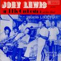 Joey Lewis, Orchestra - Brass Like Fire (Straker's US)