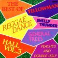 Various - Best Of Reggae Dancehall Volume 3 (Rohit US)