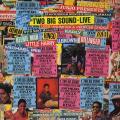 Various - Two Big Sound (Greensleeves UK)