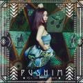 Pushim - 15th The Best Of Pushim (Ki/Oon JPN)