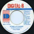 Tony Rebel - Stand Up Strong (Digital B)