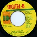 Shabba Ranks - Are You Sure (Digital B)