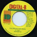 Anthony B - Calling Out For Peace (Digital B)