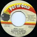 Ninjaman - Born Again (Pot Of Gold)