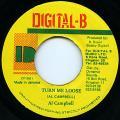 Al Campbell - Turn Me Loose (Digital B)