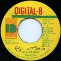 Cocoa Tea - Tell Me When (Digital B)