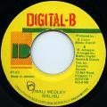 Malibu - Mali Medoley (Digital B)