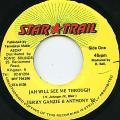 Terry Ganzie, Anthony B - Jah Will See Me Through (Star Trail)