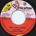 Gregory Isaacs - Want It Again Tonight (Grafton)