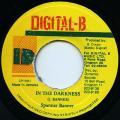 Spanner Banner - In The Darkness (Digital B)