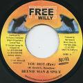 Beenie Man, Spice - You Hot (Raw) (Free Willy)