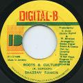 Shabba Ranks - Roots & Culture (Digital B)