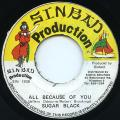 Sugar Black - All Because Of You (Sinbad)