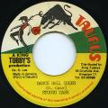 Studio Case - Dance Hall Queen (Taurus)