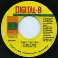 Anthony B - Can't Test We (Digital B)