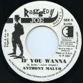 Anthony Malvo - If You Wanna (Raggedy Joe US)