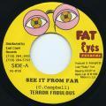 Terror Fabulous - See It From A Far (Fat Eyes US)