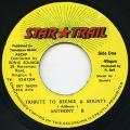 Anthony B - Tribute To Beenie & Bounty (Star Trail)