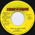 Anthony B - Raid De Barn Remix (Star Trail)