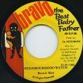 Beenie Man - Neighbourhood Watch (Bravo The Best Baby Father)