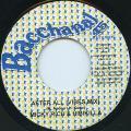 Micky Rich, Hibikilla - After All (Bacchanal JPN)