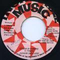 Junior Delgado - Storm Is Coming (Incredible Music)