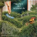 Bush Of Ghosts - Mighty Mice (Bus JPN)