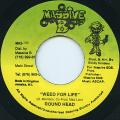 Roundhead - Weed For Life (Massive B)
