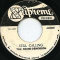 Soul Defenders (Cedric Im Brooks) - Still Calling (Supreme)