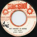 John Holt - My Heart Is Gone (Sun Shot)